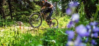Полеви тест: 5 ендуро и 4 електрически велосипеда за невъзможното изкачване